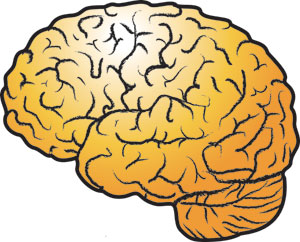 KnowledgeNews brain logo